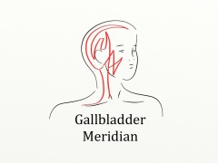meridiangallbladder