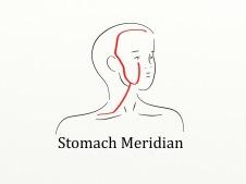 meridianstomach